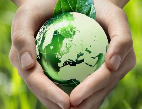 Les éco-gestes en entreprise